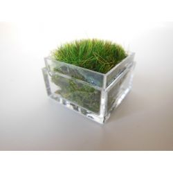 Modern Dollhouse Furniture | M112 PODS | Clear Tall Square Lucite Tray with Wheat Grass by Paris Renfroe Design