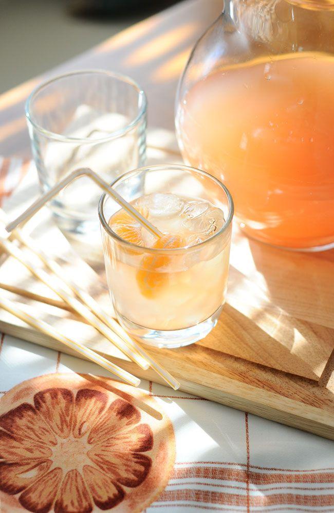 Winter Vanilla Grapefruitade with Clementine Cubes http://theminiaturemoose.com/winter-grapefruitade-with-clementine-cubes/