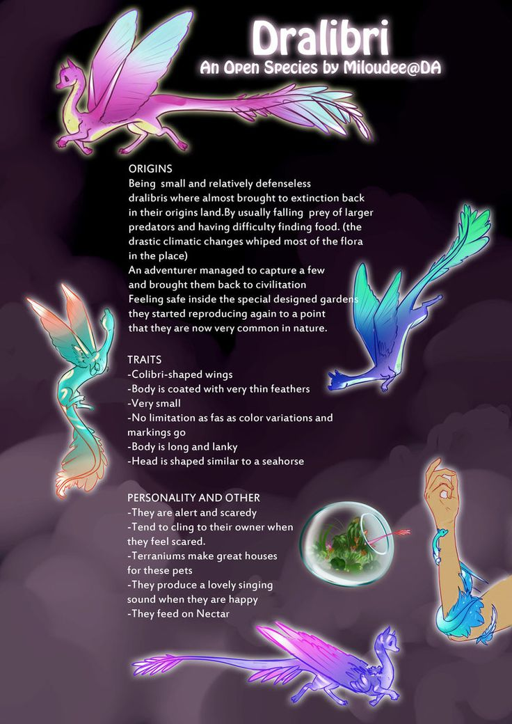 Dralibri [Open species] Introduction by miloudee
