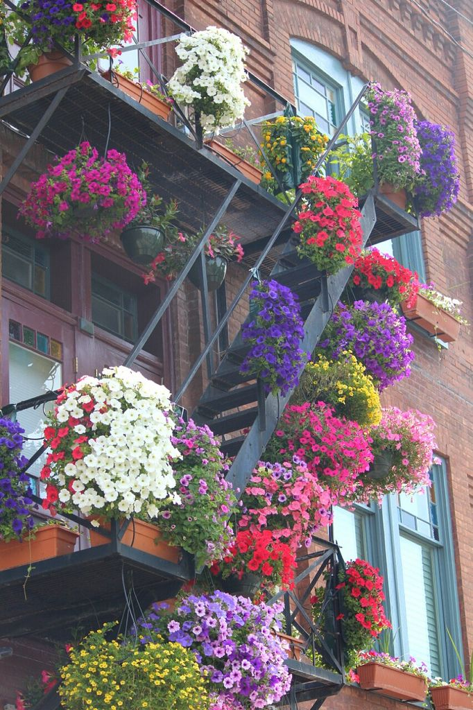 25 Best Ideas About Fire Escape On Pinterest City Life Urban And Snow Days Nyc