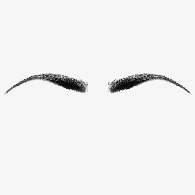 Symmetrical Female Eyebrows Material In 2020 Eyebrows Beauty