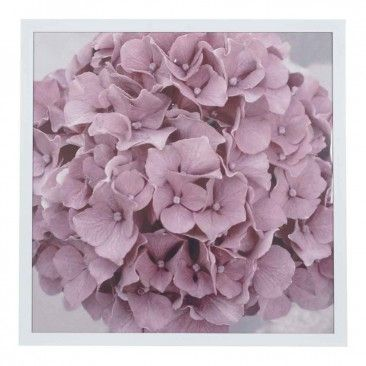 Tate Collections Pink Hydrangea 72.4X72.4 - Prints & Wall Hangings - Homewares