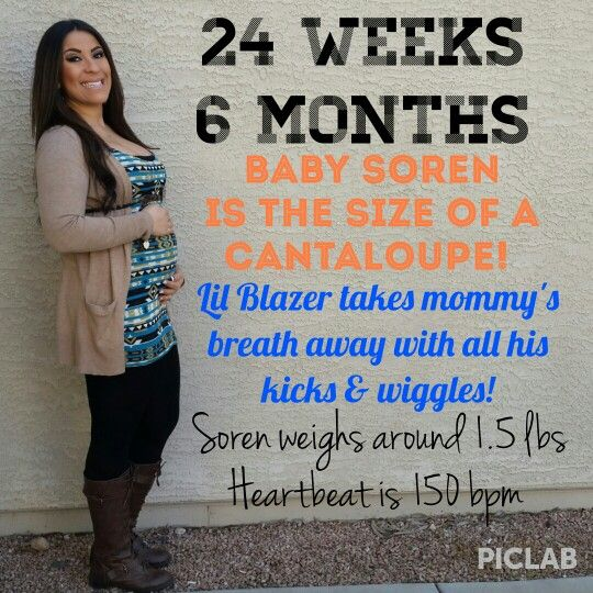 Images of 24 Weeks Pregnant Is How Many Months - #rock-cafe