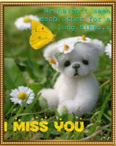 I Miss You love hug animated miss you sad love quote friend teddy bear greeting miss you quote miss you comment