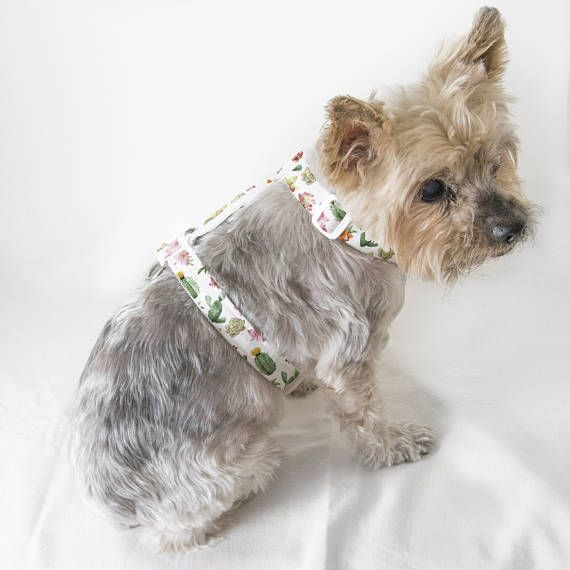 Adjustable Cactus and Floral Patterned Dog/Cat Harness-Textile Dog/Cat Harness