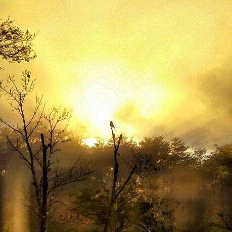 #Pucón #Chile dawn in paradise, amanece en el paraíso....