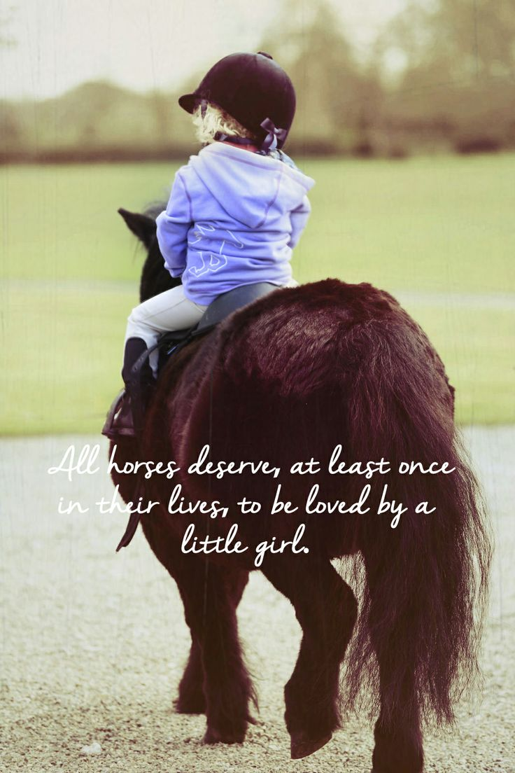 All horses deserve, at least once in their lives, to be loved by a little girl.