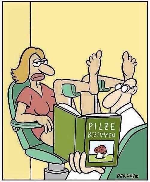 funpot von fabi witze pinterest lustiges witzig und lustige bilder. Black Bedroom Furniture Sets. Home Design Ideas