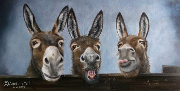Three silly donkeys 60cm x 30cm Oil on canvas SOLD