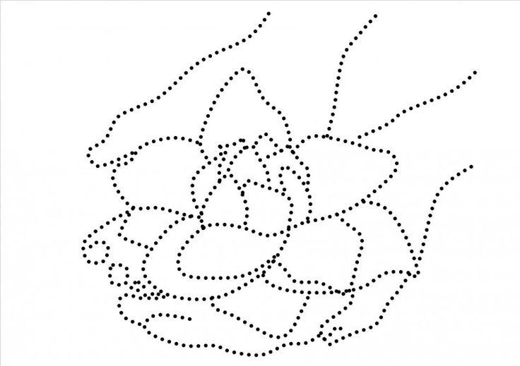 Handen met lotusbloem