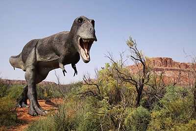 Dinosaur Trails and Tracksites near Moab National Park, Utah