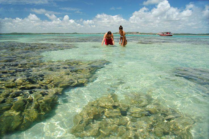 25 melhores ideias de praia de maragogi no pinterest for Piscinas naturales maragogi