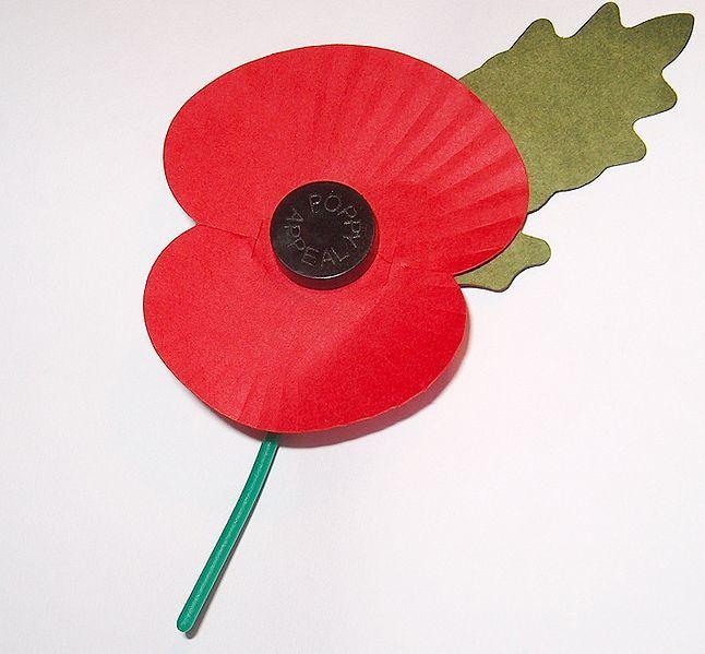 Royal British Legion's Remembrance Day Poppy