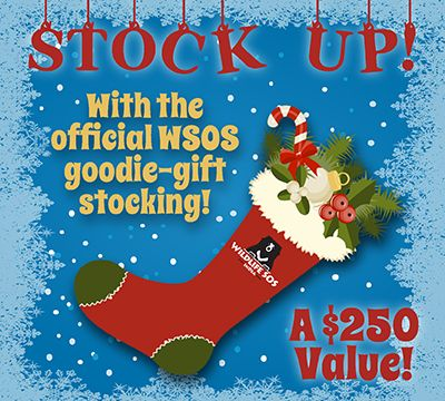 """""""Stock up"""" for the holidays by winning a Wildlife SOS gift stocking filled with SOS apparel, adorable sloth teddy bears, and, of course, all manner of elephant-related goodies! At about $250 value, this should really help ring in that spirit of good tidings!"""