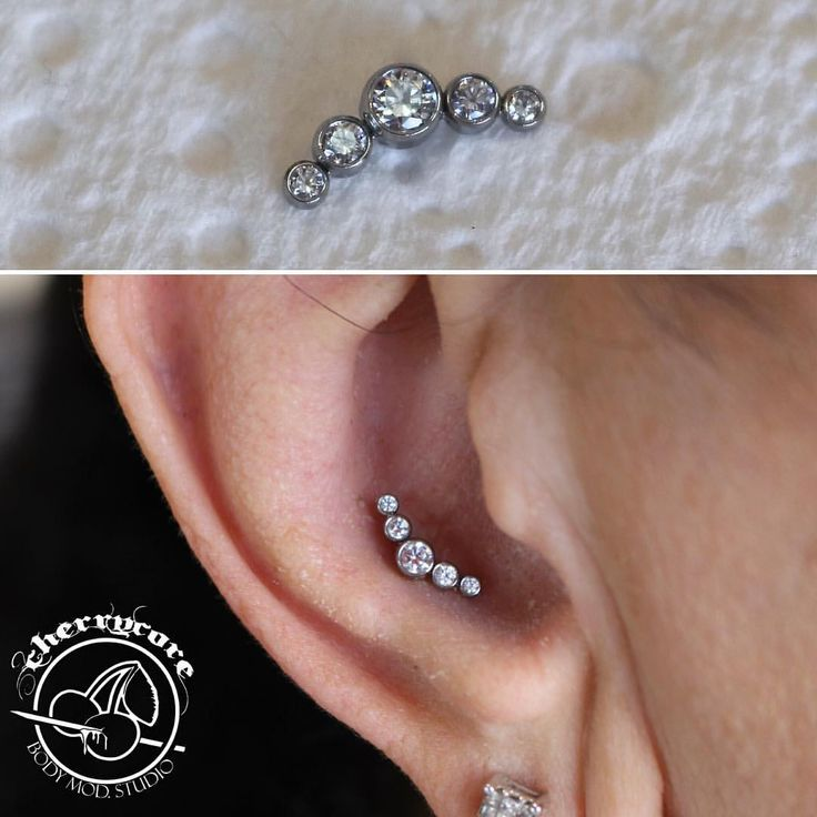 Healed 14g conch not done by us, but we certainly upgraded the Jewellery to this beautiful titanium Anatometal arc cluster.