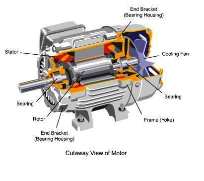 Cutaway view of motor knowledge pinterest cutaway for Electric motor shaft types