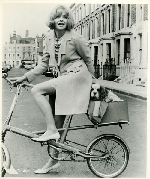 Susannah York and her King Charles ride a bike.