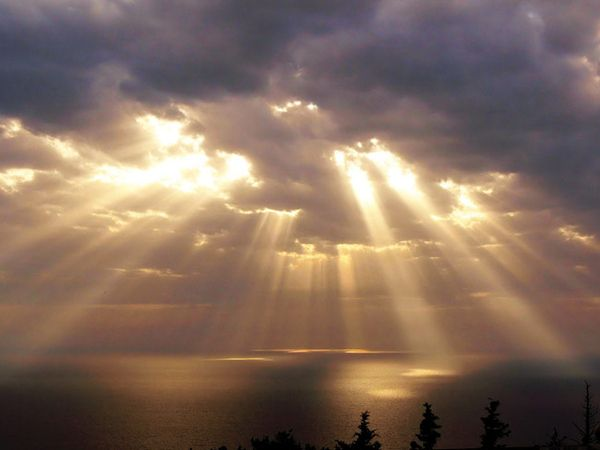 Crepuscular Rays--rays of sunlight coming from a certain point in the sky through the clouds.