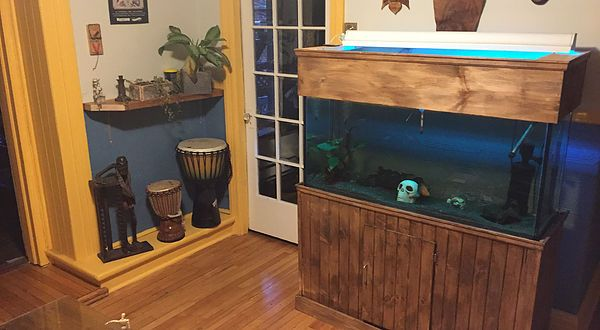 Description des installations présentes chez tatouage calypso vue de la salle d'accueil et de consultations, habitat marin. #tatouagecalypso #aquarium #studio #tatouage #tattoo #tatoueur #quebec #quebectattooshops #justinlanouette #decorations