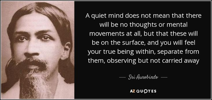 A quiet mind does not mean that there will be no thoughts or mental movements at all, but that these will be on the surface, and you will feel your true being within, separate from them, observing but not carried away