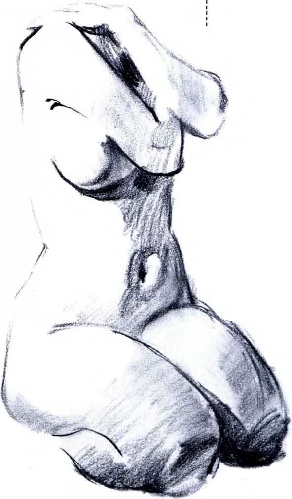 figure drawing - female - https://www.facebook.com/CharacterDesignReferences