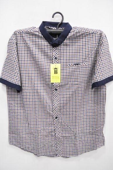 Koszula Męska Bill Group 560+1 Kr. Rękaw  (M-4XL)