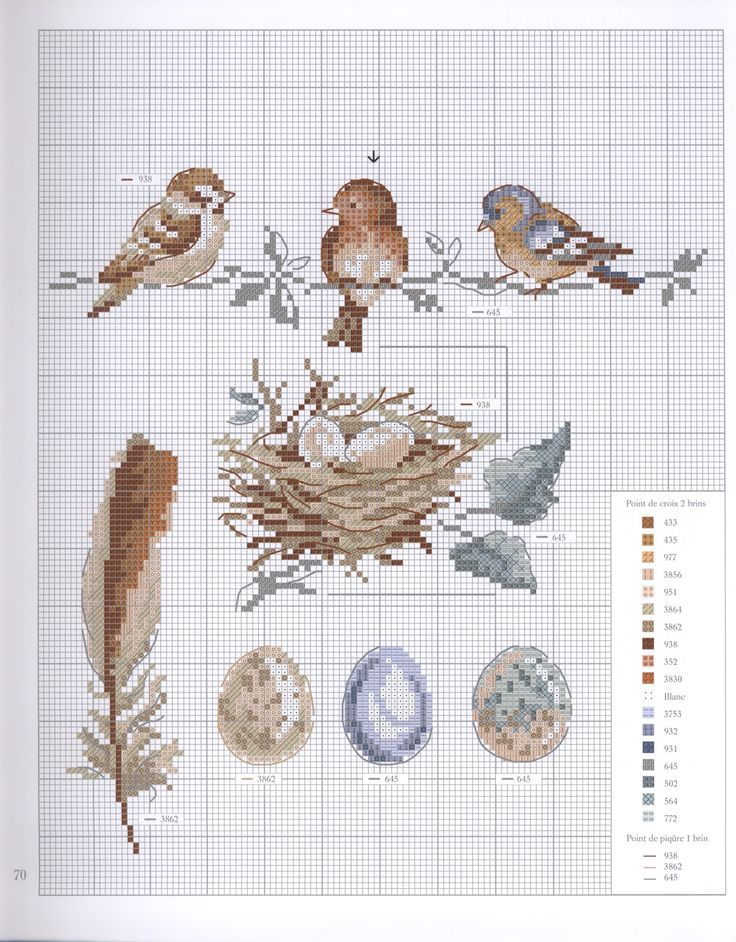 imgbox – Love the colors and little birds. The last egg is greenish and the leaves on the nest are green.