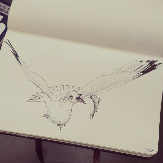 Day 20: Gull with fish. #100daysofdoodling by Ayla Paul
