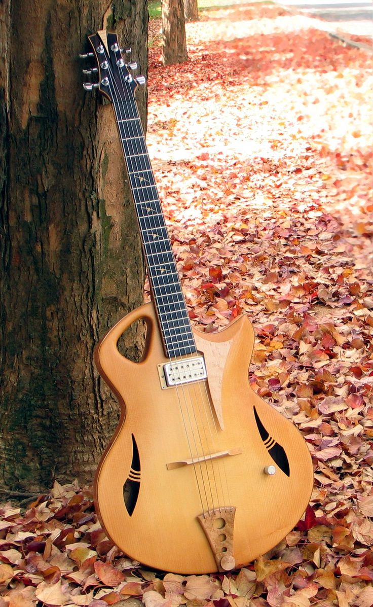frettedchordophones: frettedchordophones: The autumn leaves with the spitfire archtop jazz guitar Lardys Chordophone of the day - a Year ago ==Lardys Chordophone of the day - 2 years ago --- https://www.pinterest.com/lardyfatboy/