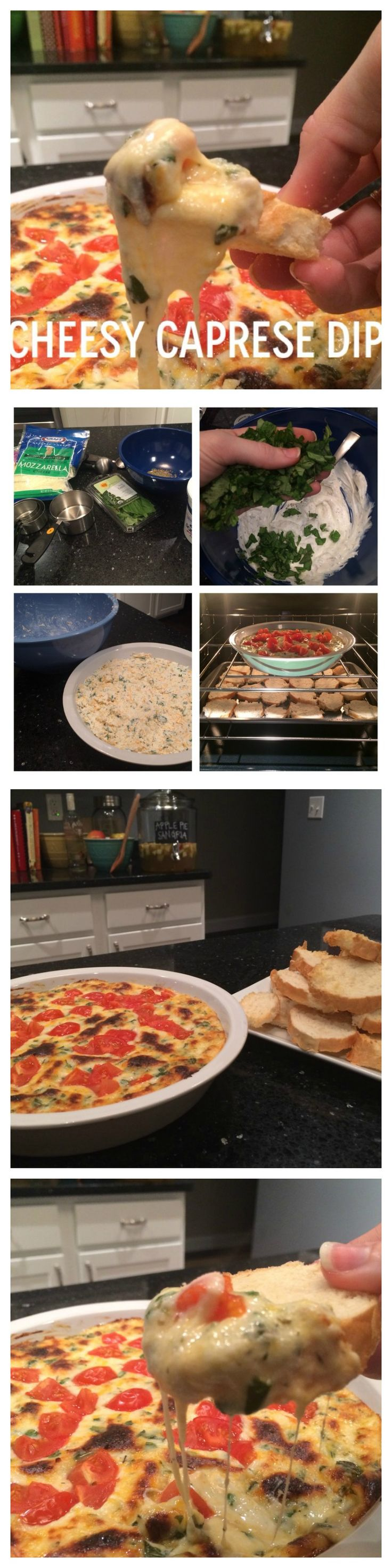 CHEESY CAPRESE DIP!! the absolute best cheese dip you will ever eat. cheese, basil, tomatoes, YUM {The Cookie Rookie}