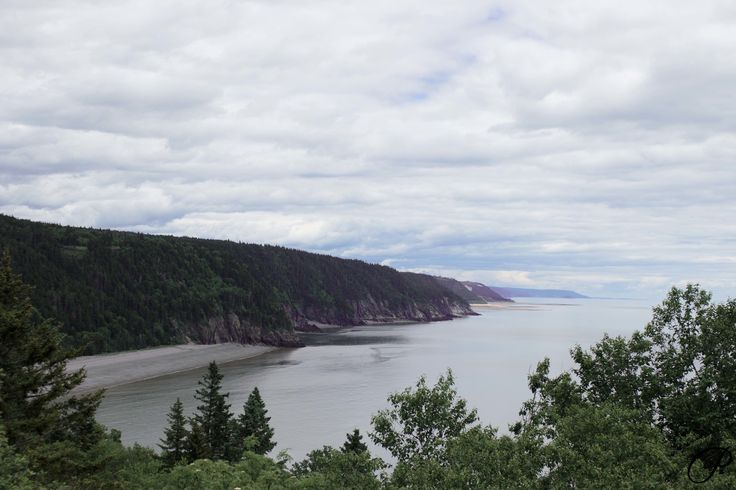 The view from the road in Fundy National Park, New Brunswick