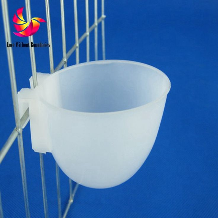 Hanging small cups in the cage, nest accessory for Small Chicken, Small Bird, Small animail,  fill food or drink water wholesale