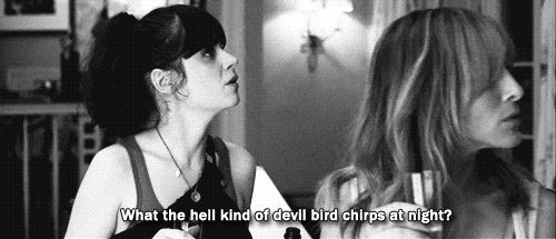 Love Zooey Deschanel. Failure to Launch. She was the best part of the movie.