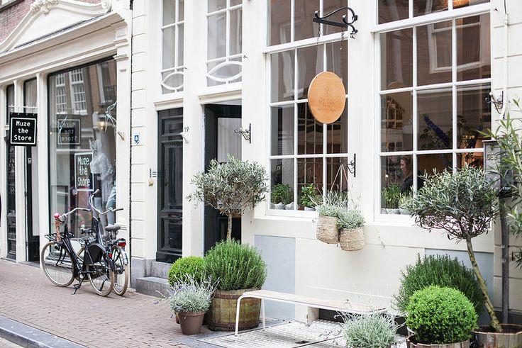 AMSTERDAM Pluk (Amsterdam guide | Farfelue)