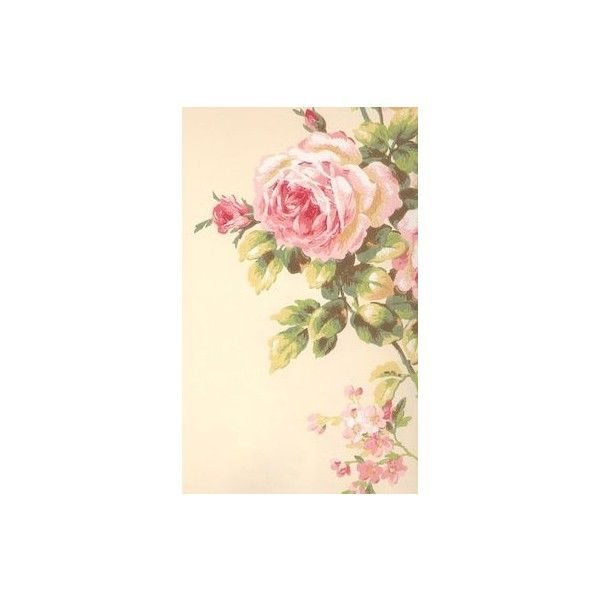 Tea Cups and Roses Victorian Stickers ❤ liked on Polyvore featuring home, home decor, office accessories and rose stickers