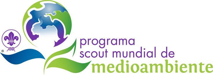 logo-psmma-trans