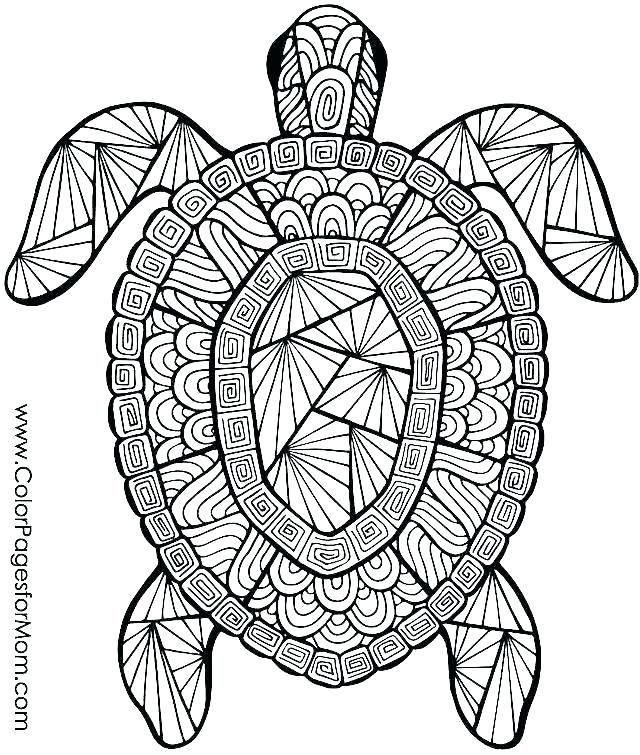 Colouring Pages For Adults Hard Turtle Coloring Pages Abstract Coloring Pages Detailed Coloring Pages