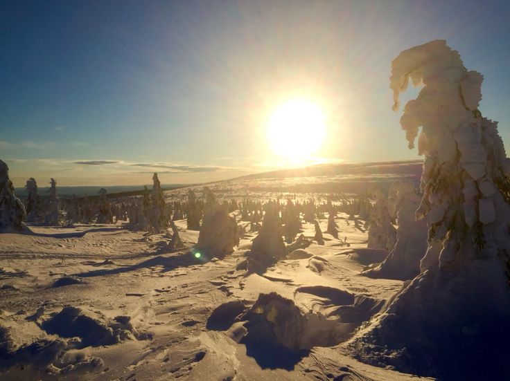 Beutiful day at the Sälen mountain