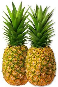 Bromelain is a natural anticoagulant that breaks down the blood-clotting protein fibrin. Two clinical trials suggest the enzyme can improve the symptoms of angina and thrombophlebitis. Bromelain thins blood and mucus, and may benefit asthmatics and chronic bronchitis sufferers. Evidence that B. can trigger beneficial changes in white blood cells, and thus improve immune function. Anti-inflammatory properties (may heal minor muscle injuries) and for alleviating symptoms of rheumatoid…