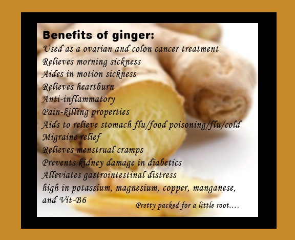 28 best Ginger images on Pinterest Home remedies, Chest - food poisoning duration