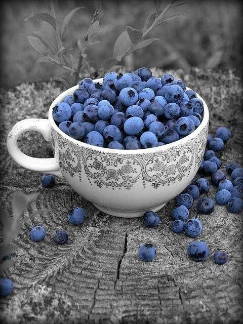 blueberries / splash of color photography.....Want that mug too