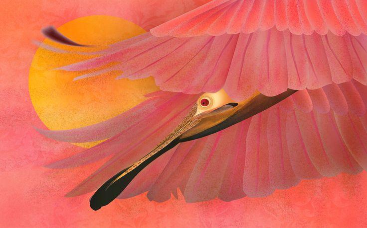 The Beauty Flight #Birds #RevolutionartDesign