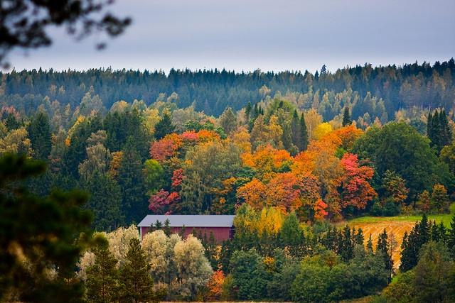 Syksyinen lato by Pekka Vainio, via Flickr - Autumn in Finland
