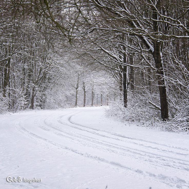 https://flic.kr/p/QUfPor | snow road
