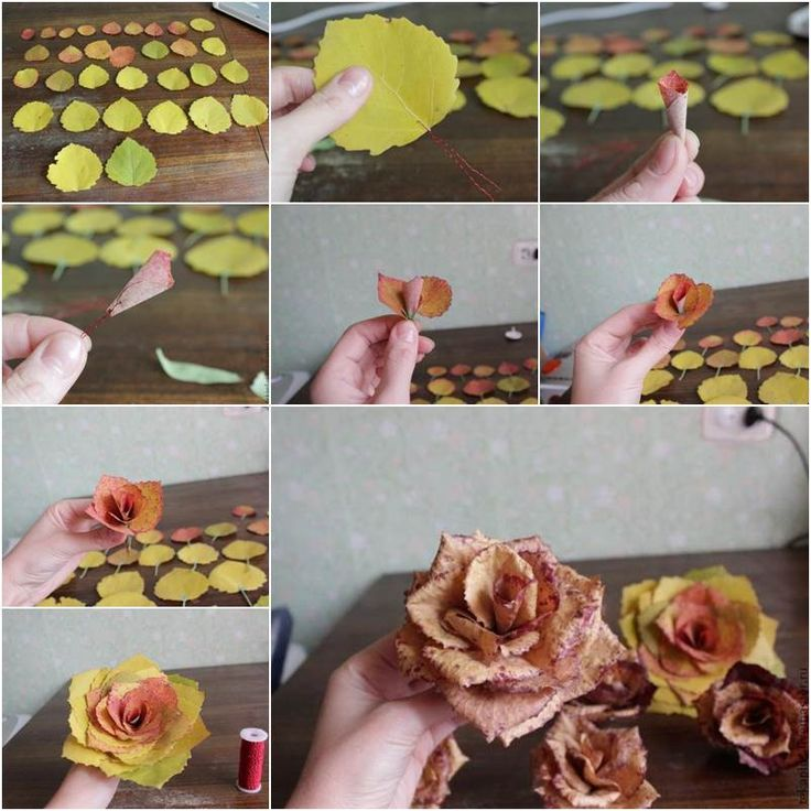 We have often seen a variety of ways to make paper or fabric roses, but have you ever seen roses made with realleaves? Here is an amazing DIY project to make roses from autumn leaves. Whata creative idea to use one natural plant to express another because the texture of …