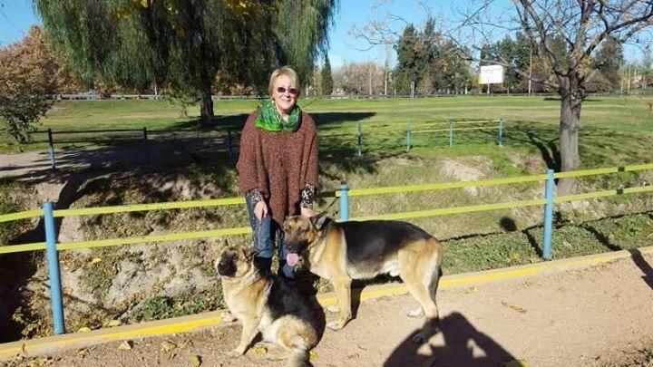 Perro Perdido - Las Cañas - Guaymallén - Mendoza Argentina Fecha Perdido / Encontrado : 18 Agosto 2017 Direccion : Los Reyunos 2447 - Barrio Jardines de Estrada  Email : ricardo-alonso@hotmail.com Telefono : 54 9 261 6518719 Telefono 2 : 54 261 4322504 Se perdieron los 2 perros. La mas chica es una hembra de 11 meses se llama Kali. El mas grande es un macho de 3 años se llama Kiron. - facebook.com/ongDAAS