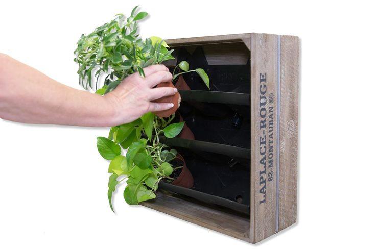 Wall Herb Garden | Indoor Herb Wall Garden | Herb Wall Garden - Gsky Plant Systems Inc.