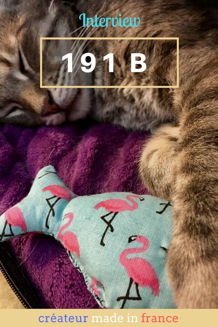 interview de 191 B, la boutique tendance d'accessoires pour chiens et pour chats (et pour humains)  made in france - noeud de papillon, jouets et bandana pour animaux - secrets d entrepreneur #entrepreneur #madeinfrance #animauxdecompagnie #chat #banana #couture #handmade