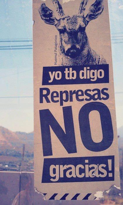 No, thanks // Patagonia