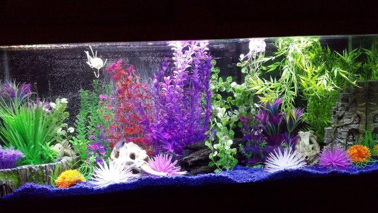 Aqueon LED Aquarium Light Fixture, 48-Inch | eBay